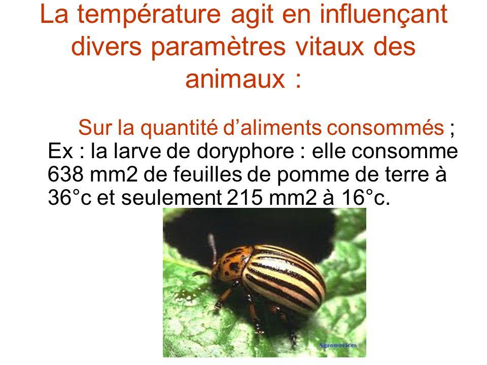 La température agit en influençant divers paramètres vitaux des animaux :