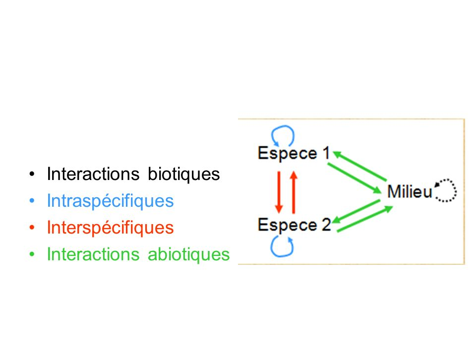 Interactions biotiques