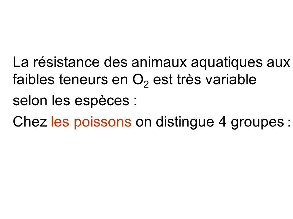 Chez les poissons on distingue 4 groupes :