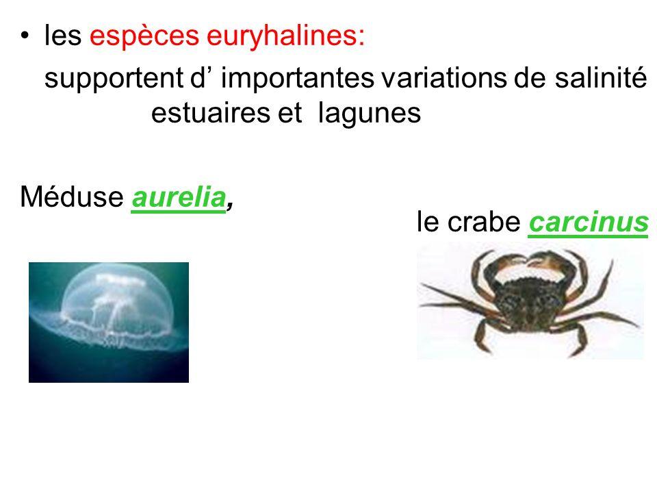 les espèces euryhalines: