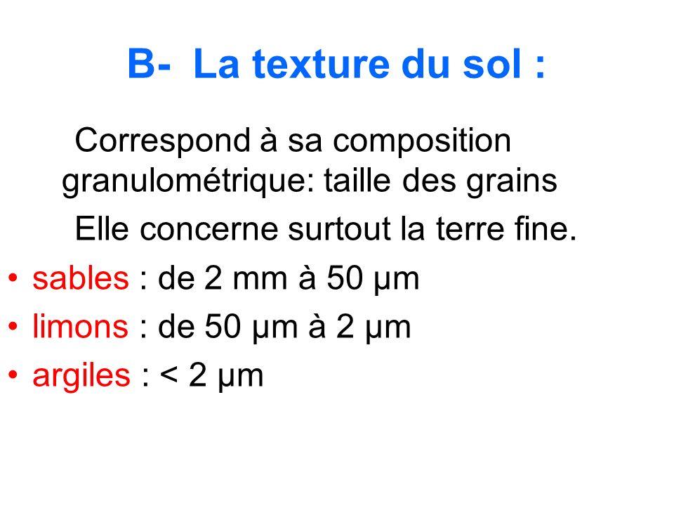 B- La texture du sol :Correspond à sa composition granulométrique: taille des grains. Elle concerne surtout la terre fine.
