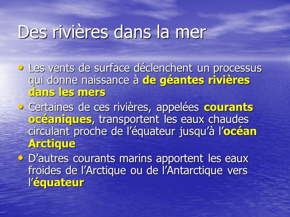 Des rivières dans la mer
