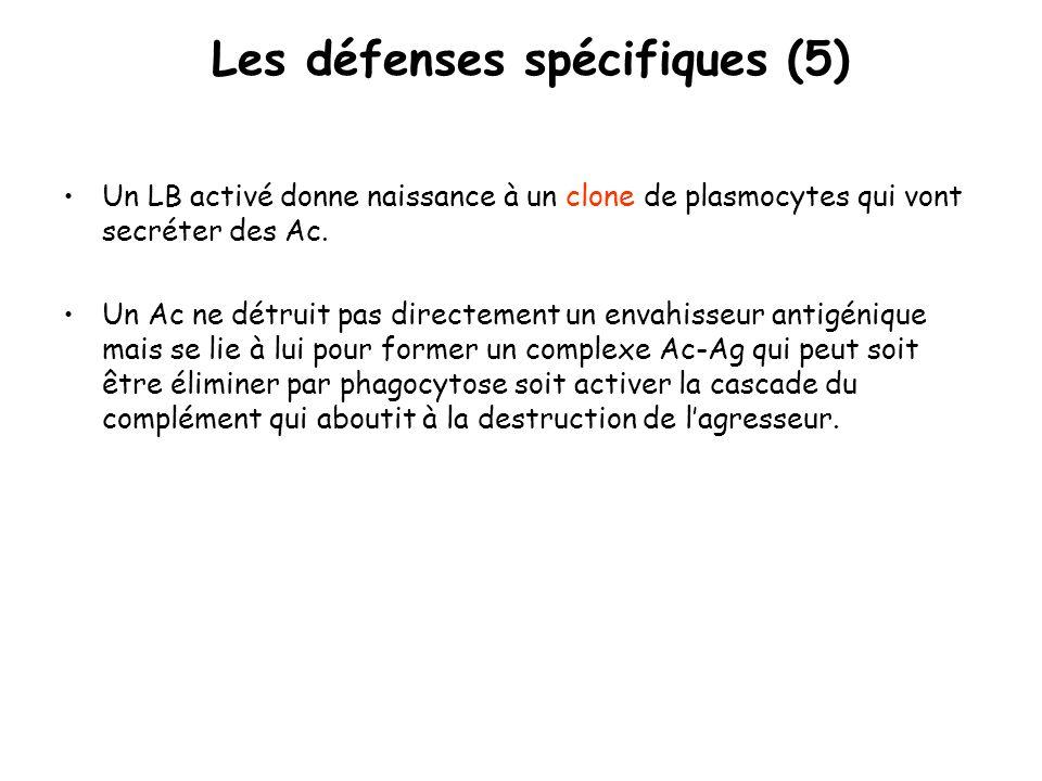 Les défenses spécifiques (5)