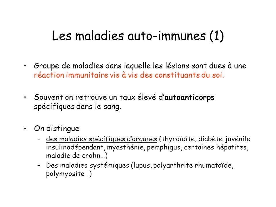 Les maladies auto-immunes (1)