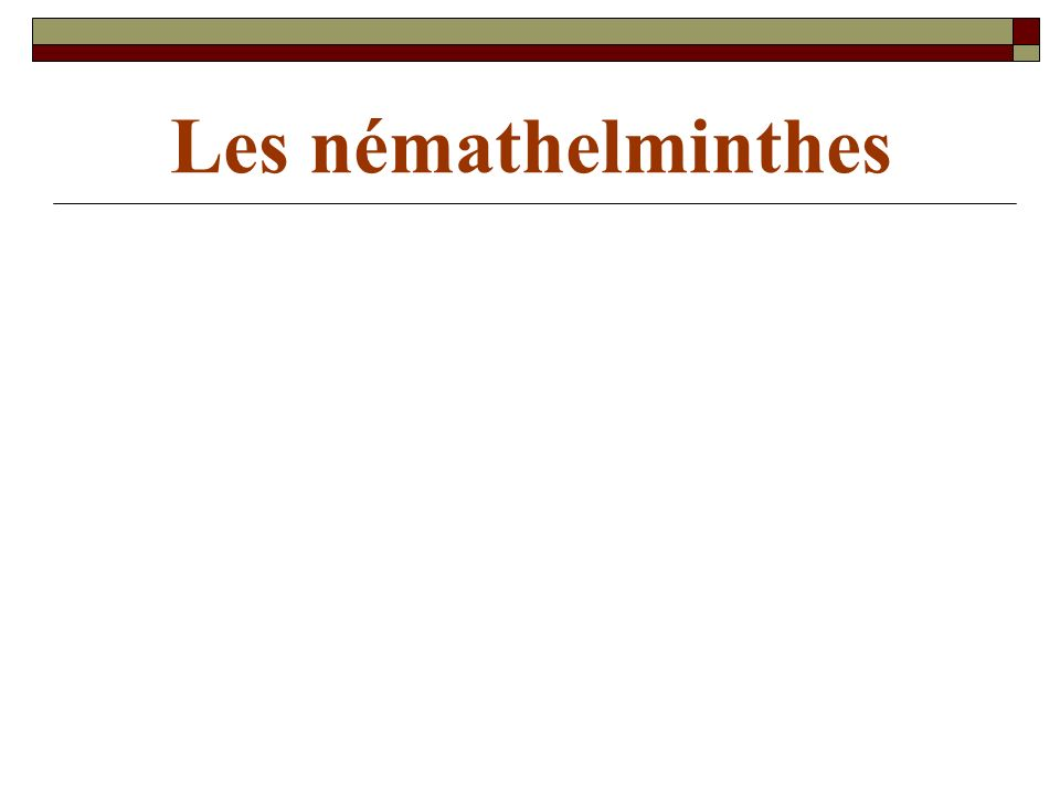 Les némathelminthes