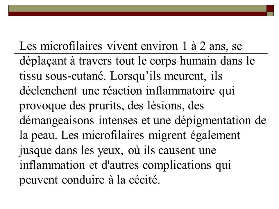 Les microfilaires vivent environ 1 à 2 ans, se déplaçant à travers tout le corps humain dans le tissu sous-cutané.