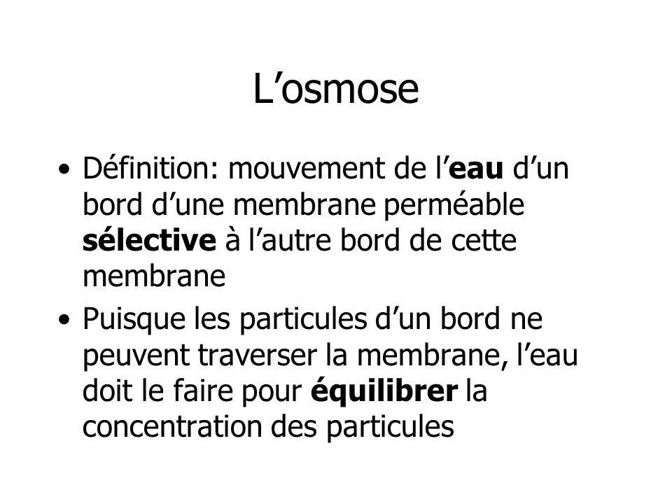 L'osmose Définition: mouvement de l'eau d'un bord d'une membrane perméable sélective à l'autre bord de cette membrane.