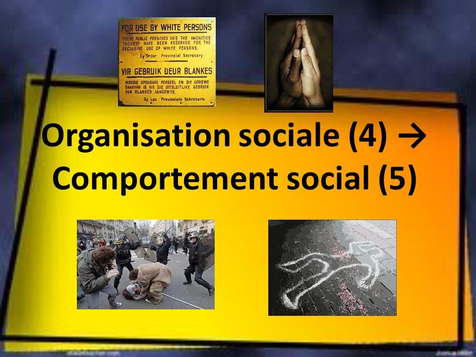 Organisation sociale (4) → Comportement social (5)