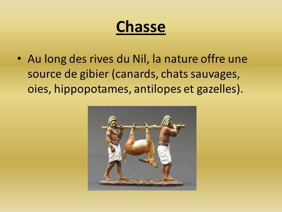 ChasseAu long des rives du Nil, la nature offre une source de gibier (canards, chats sauvages, oies, hippopotames, antilopes et gazelles).