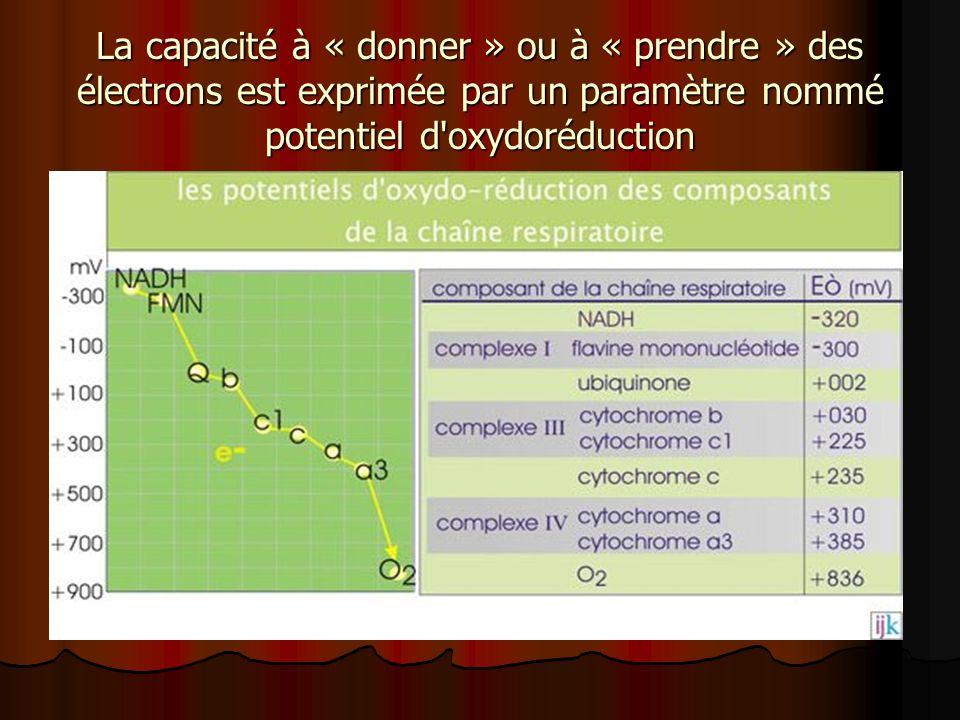 La capacité à « donner » ou à « prendre » des électrons est exprimée par un paramètre nommé potentiel d oxydoréduction