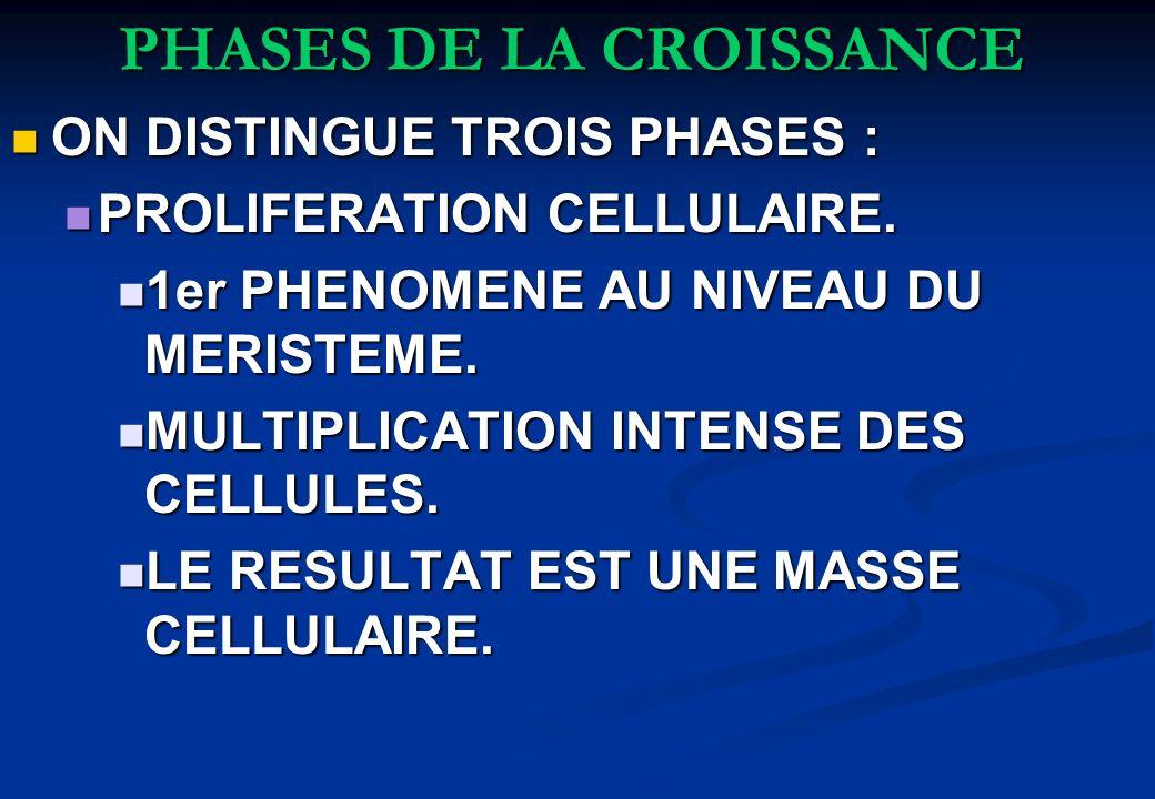 PHASES DE LA CROISSANCE