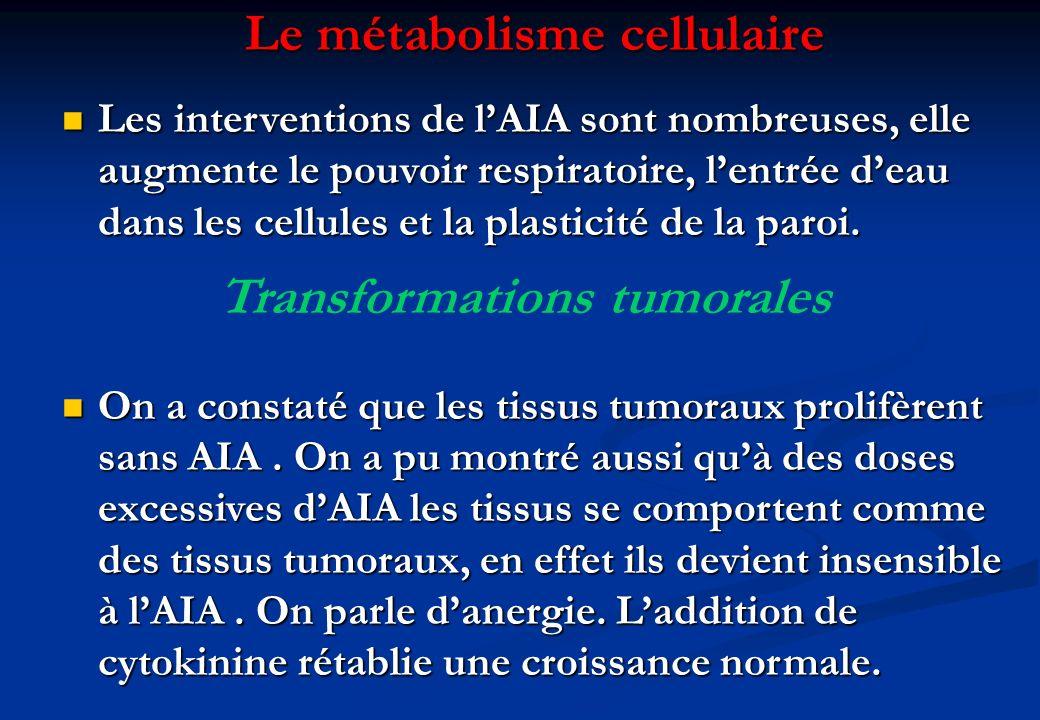 Le métabolisme cellulaire Transformations tumorales