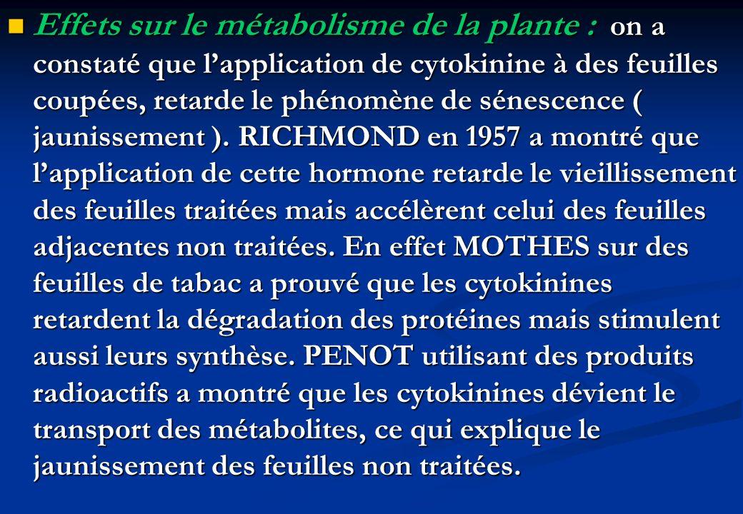 Effets sur le métabolisme de la plante : on a constaté que l'application de cytokinine à des feuilles coupées, retarde le phénomène de sénescence ( jaunissement ).
