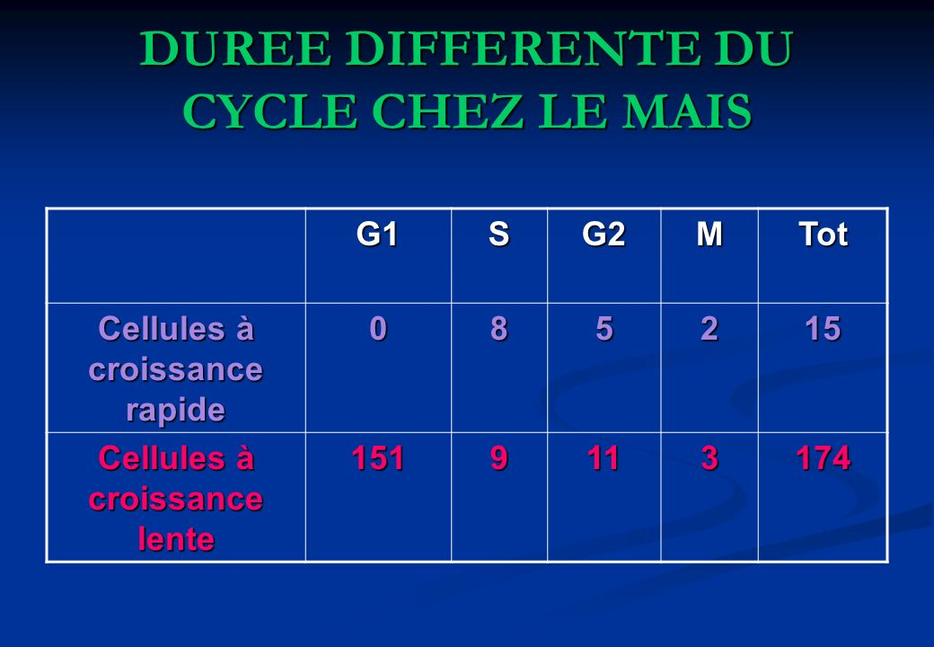 DUREE DIFFERENTE DU CYCLE CHEZ LE MAIS