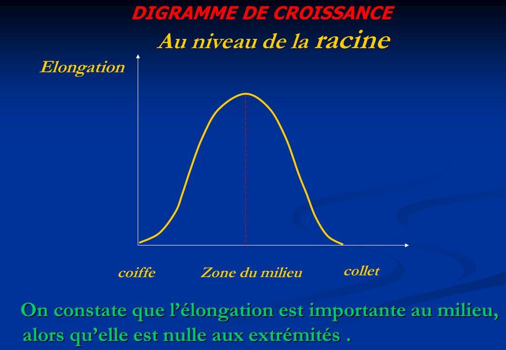 DIGRAMME DE CROISSANCE