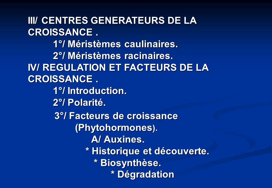 III/ CENTRES GENERATEURS DE LA CROISSANCE .