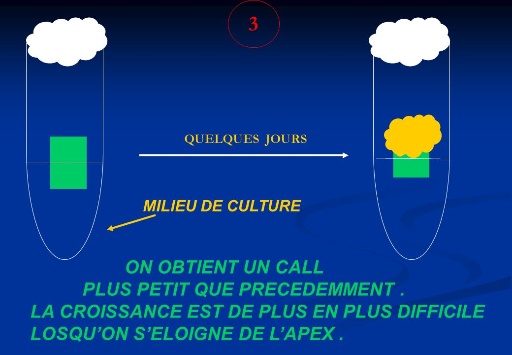3 ON OBTIENT UN CALL PLUS PETIT QUE PRECEDEMMENT .