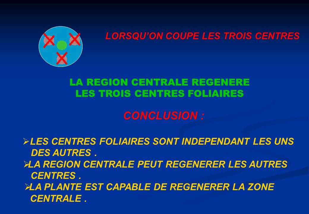CONCLUSION : LORSQU'ON COUPE LES TROIS CENTRES