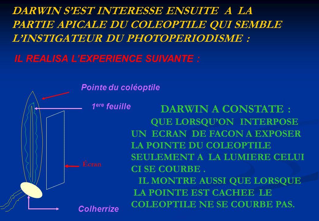 DARWIN S'EST INTERESSE ENSUITE A LA