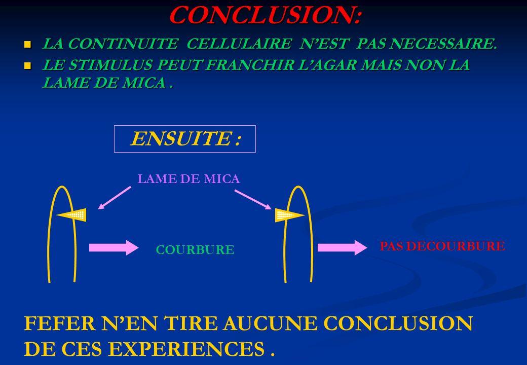 CONCLUSION: ENSUITE : FEFER N'EN TIRE AUCUNE CONCLUSION