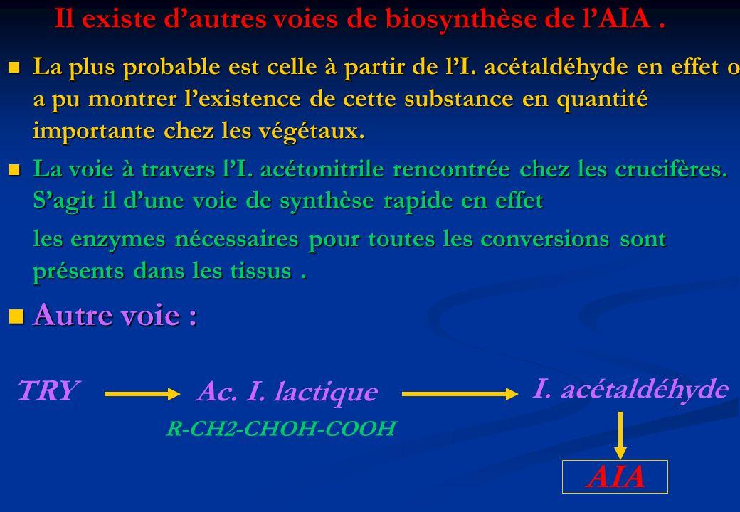 Il existe d'autres voies de biosynthèse de l'AIA .