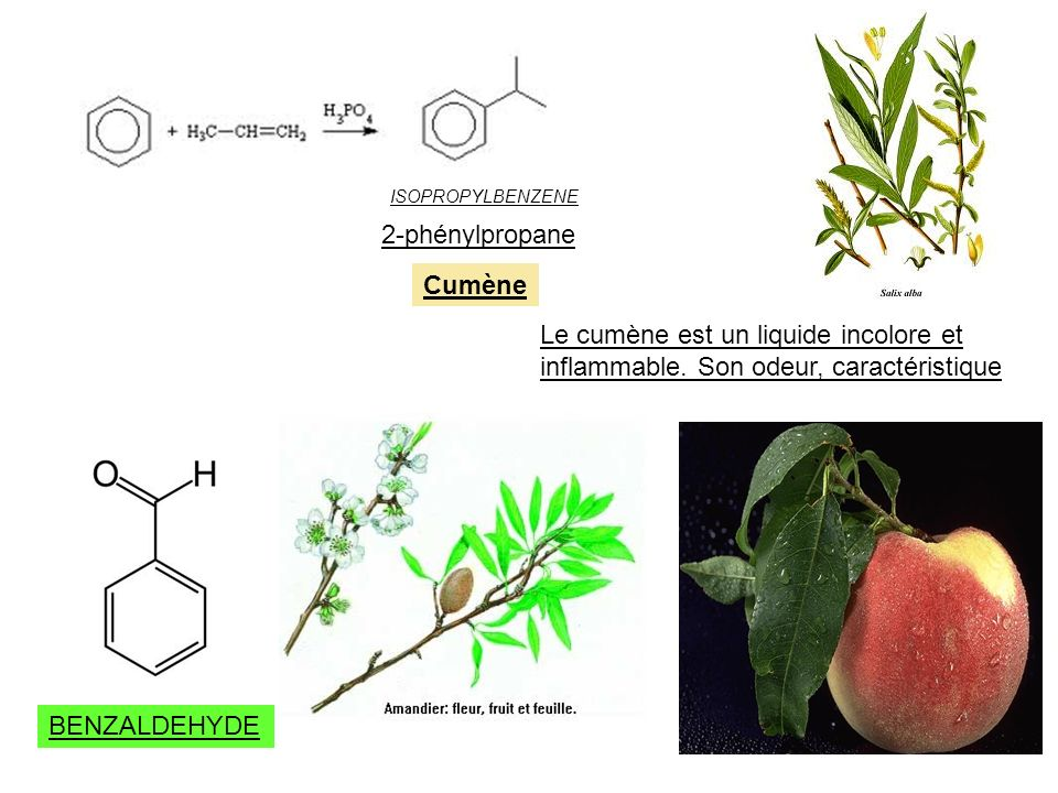 2-phénylpropane Cumène