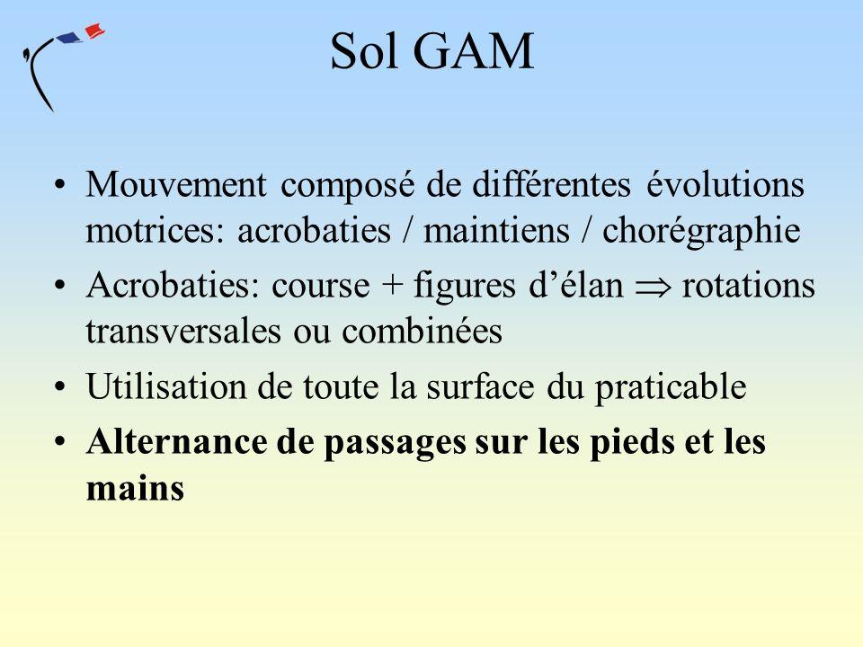 Sol GAM Mouvement composé de différentes évolutions motrices: acrobaties / maintiens / chorégraphie.