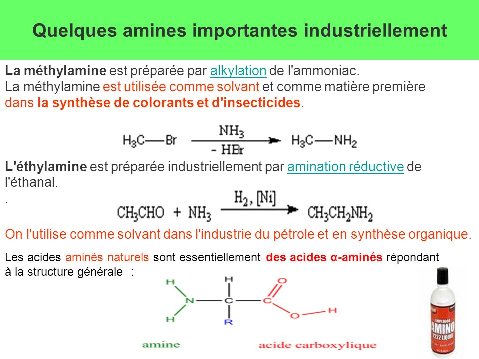 Quelques amines importantes industriellement
