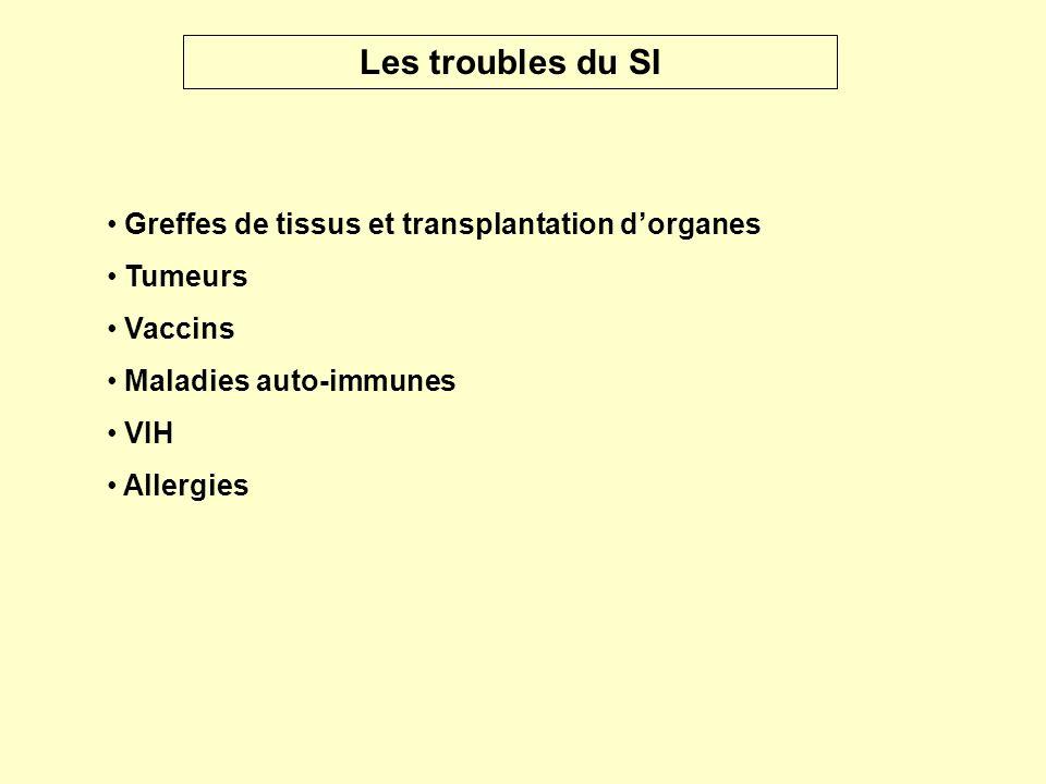 Les troubles du SI Greffes de tissus et transplantation d'organes