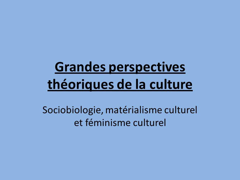 Grandes perspectives théoriques de la culture