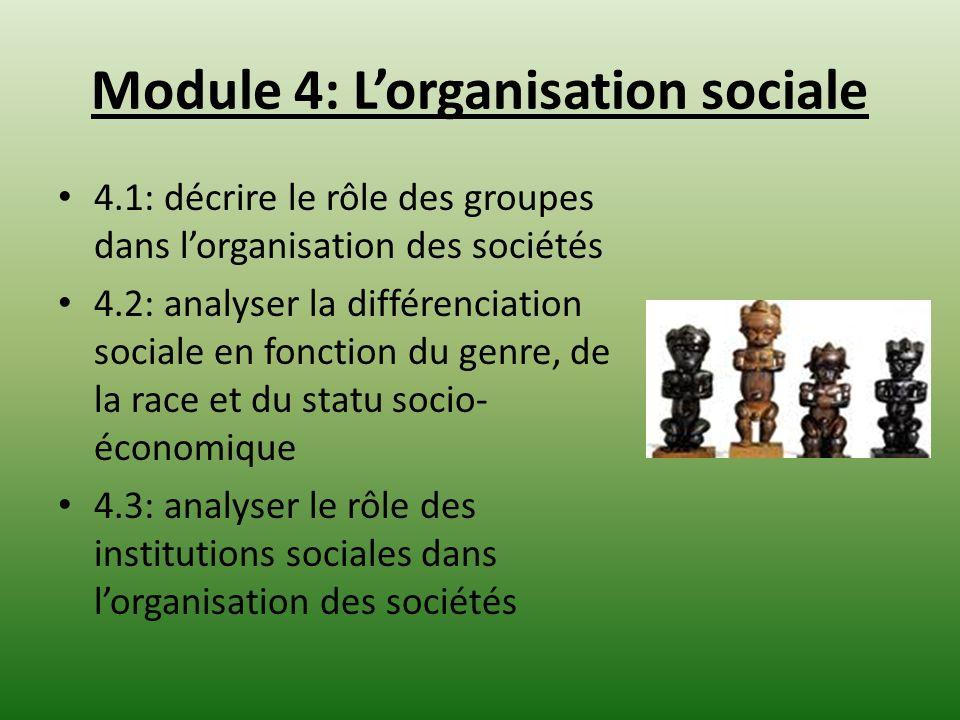 Module 4: L'organisation sociale