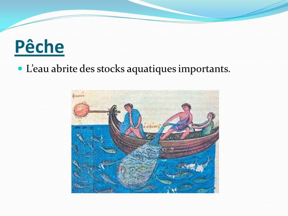 Pêche L'eau abrite des stocks aquatiques importants.