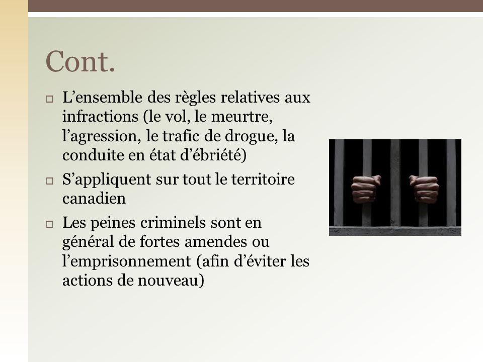 Cont. L'ensemble des règles relatives aux infractions (le vol, le meurtre, l'agression, le trafic de drogue, la conduite en état d'ébriété)