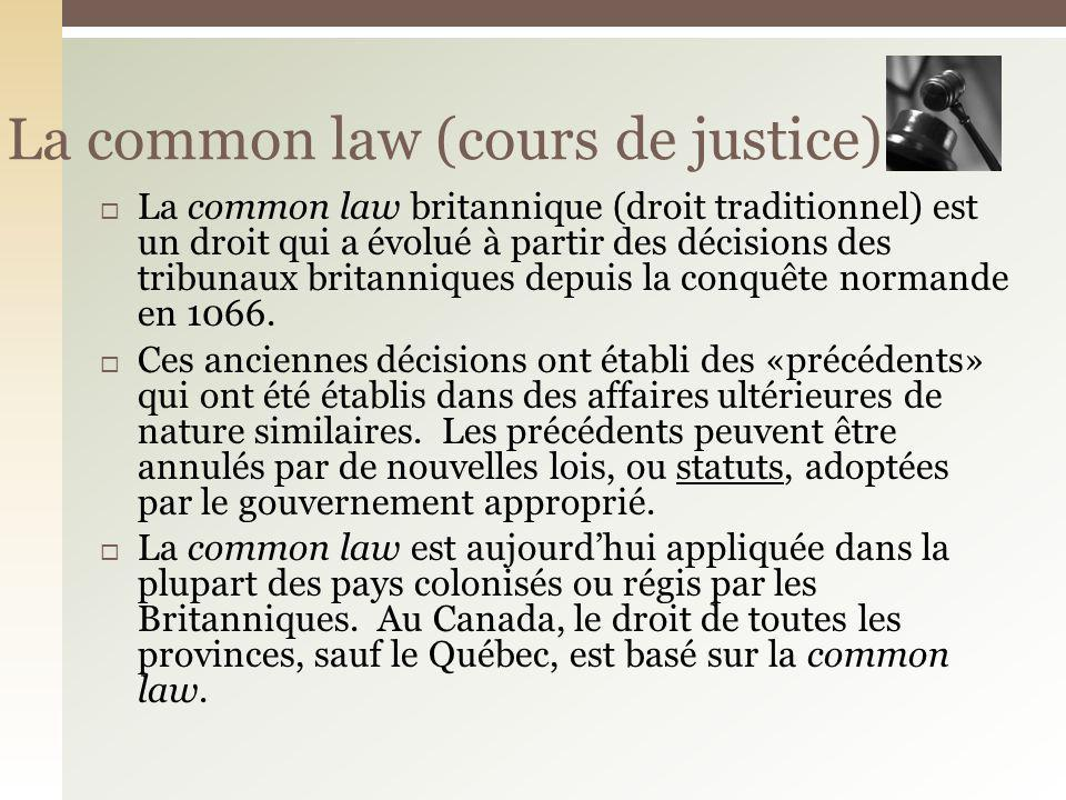 La common law (cours de justice)