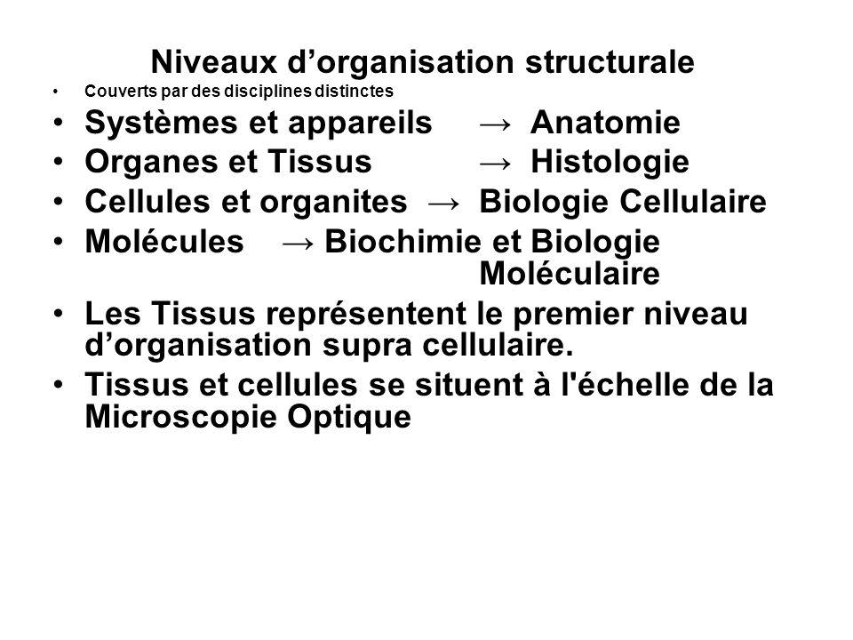 Niveaux d'organisation structurale