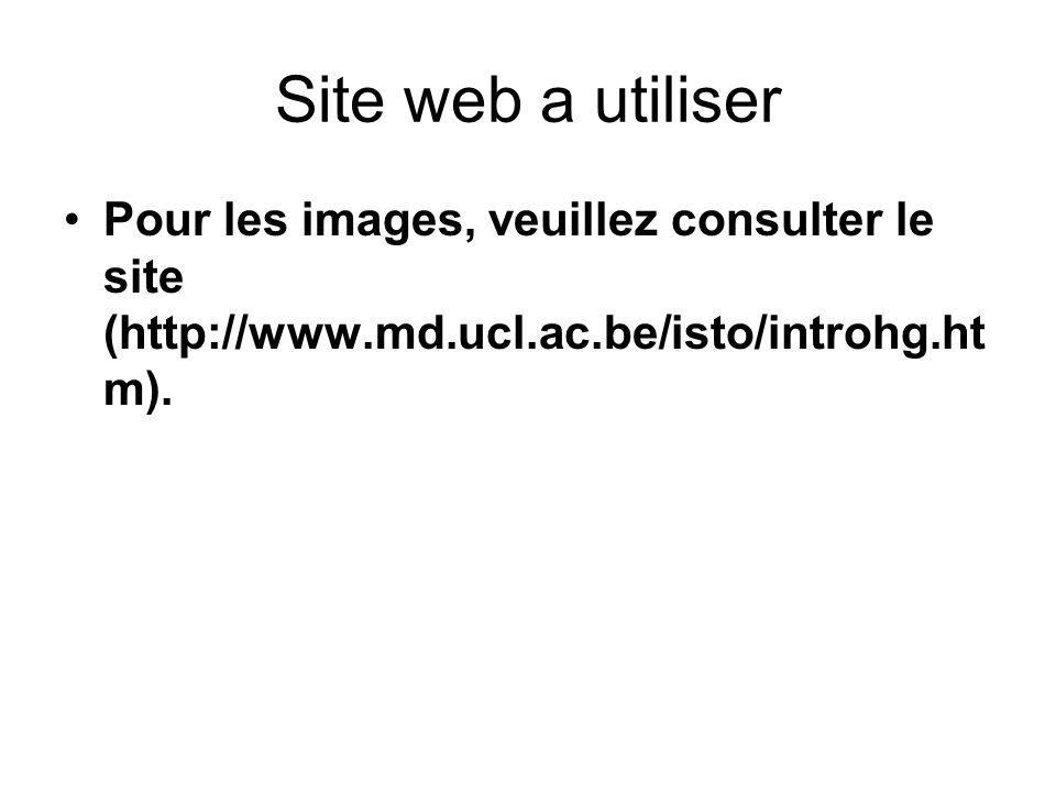 Site web a utiliser Pour les images, veuillez consulter le site (http://www.md.ucl.ac.be/isto/introhg.htm).