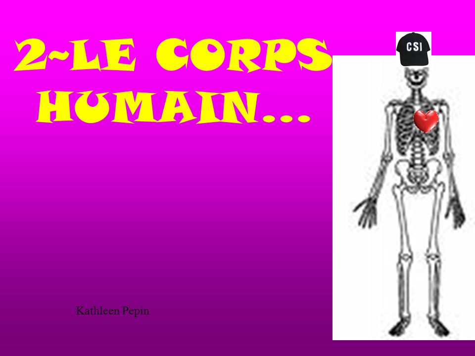 2~LE CORPS HUMAIN… Kathleen Pepin
