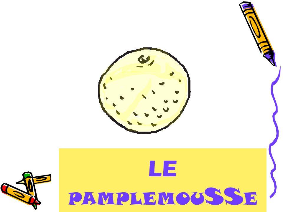 LE PAMPLEMOUSSE