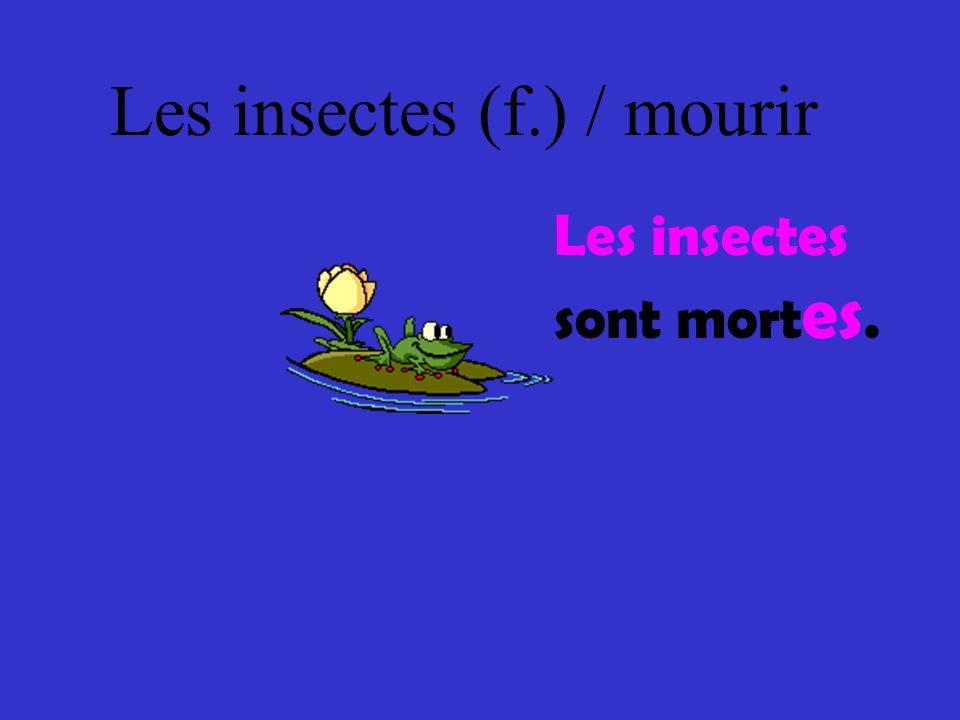 Les insectes (f.) / mourir