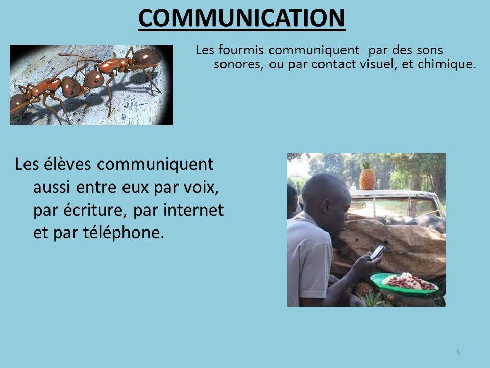 COMMUNICATION Les fourmis communiquent par des sons sonores, ou par contact visuel, et chimique.