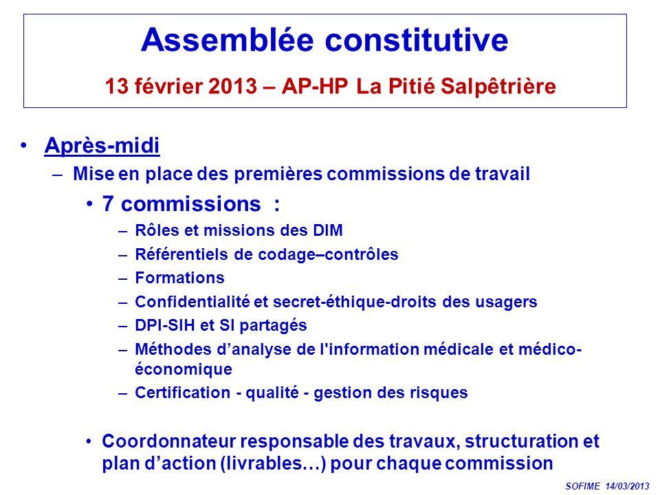 Assemblée constitutive 13 février 2013 – AP-HP La Pitié Salpêtrière