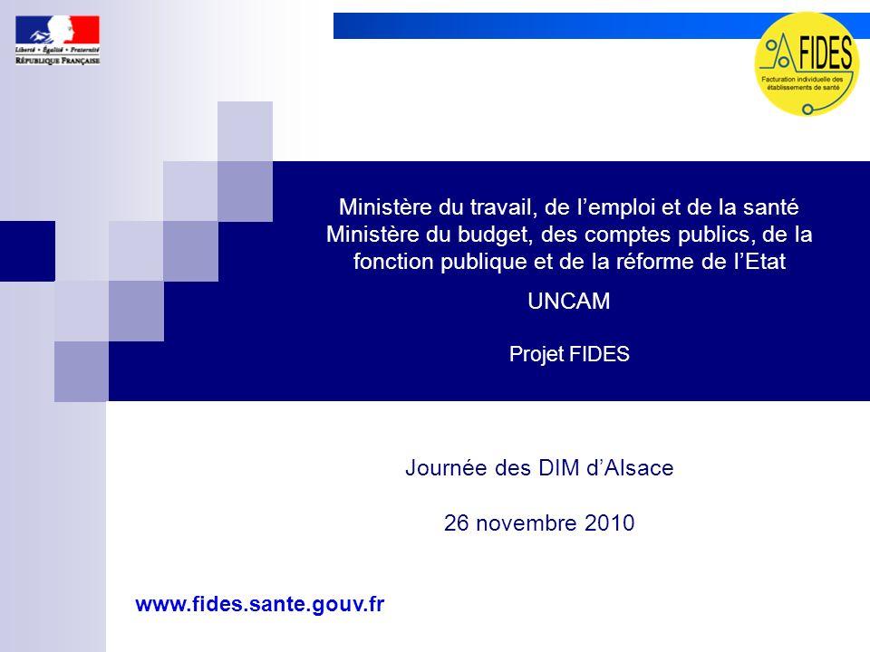 Journée des DIM d'Alsace 26 novembre 2010