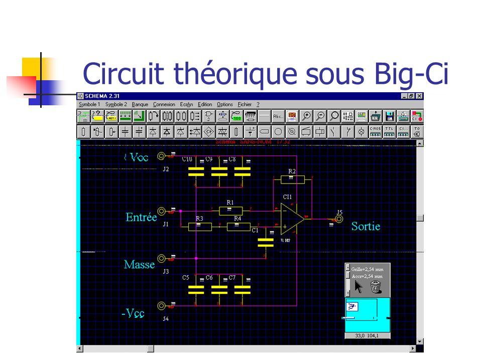 Circuit théorique sous Big-Ci