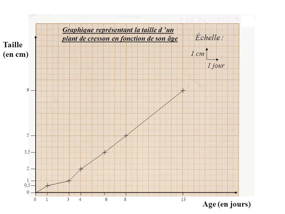 Échelle : Taille (en cm) Age (en jours)