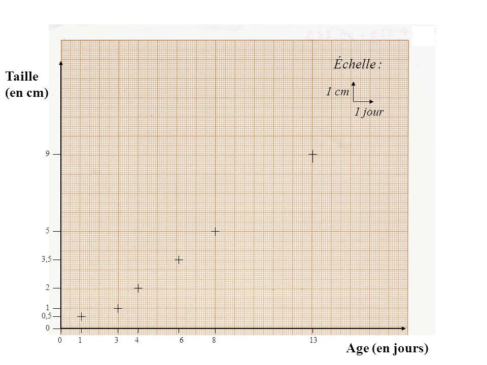 Échelle : Taille (en cm) Age (en jours) 1 cm 1 jour 9 5 3,5 2 1 0,5 1