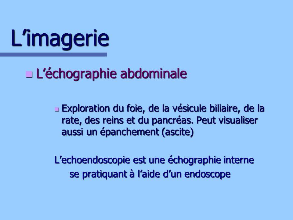 L'imagerie L'échographie abdominale