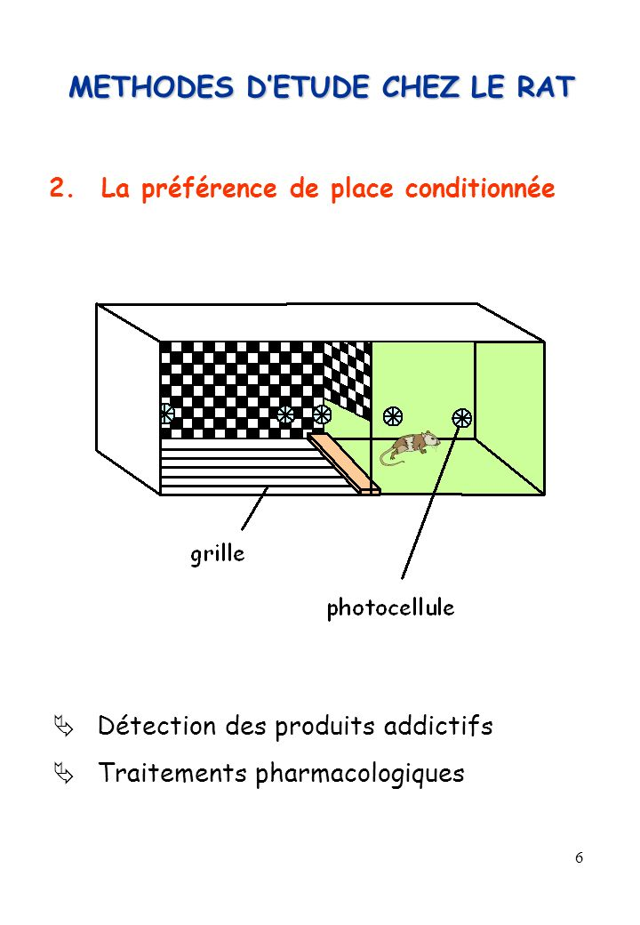 METHODES D'ETUDE CHEZ LE RAT