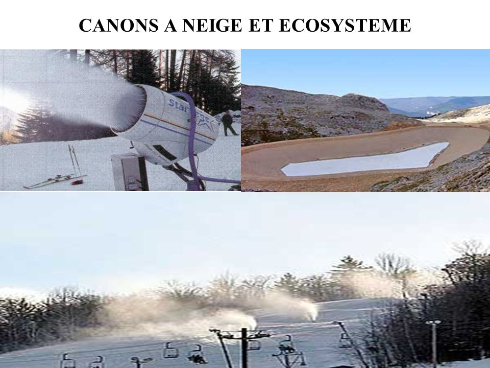 CANONS A NEIGE ET ECOSYSTEME