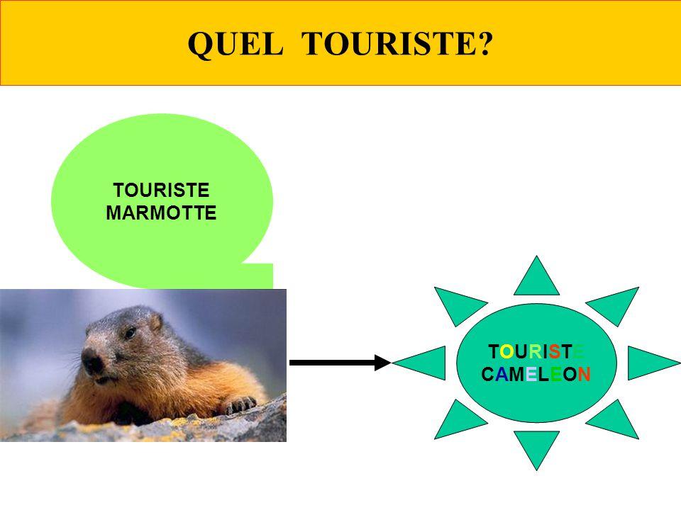 QUEL TOURISTE TOURISTE MARMOTTE TOURISTE CAMELEON