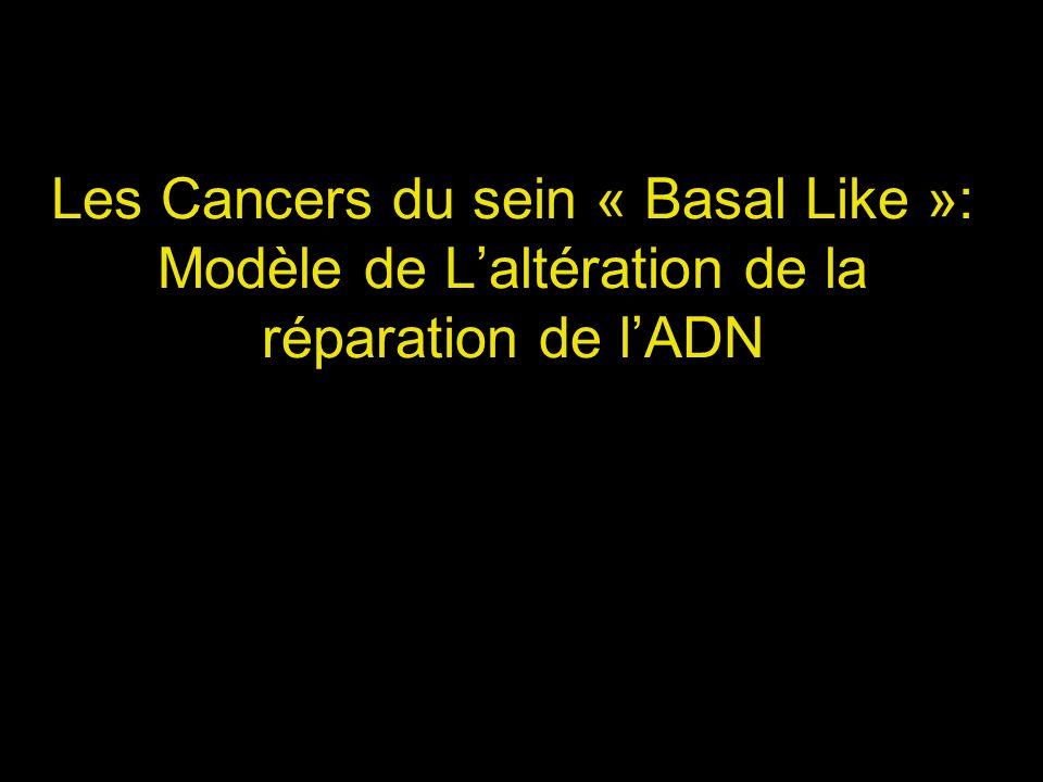 Les Cancers du sein « Basal Like »: Modèle de L'altération de la réparation de l'ADN